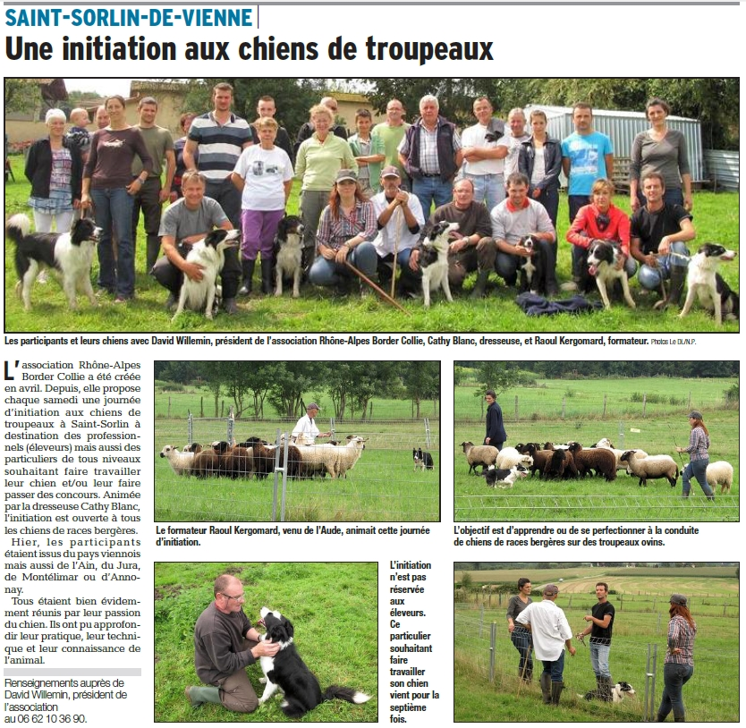 rhône alpes border collie isère formation berger initiation stage troupeau cathy blanc saint sorlin vienne brebis noire velay thônes marthod apprentissage technique conduite chiot vendre chien dressé lof dauphiné libéré article août 2014